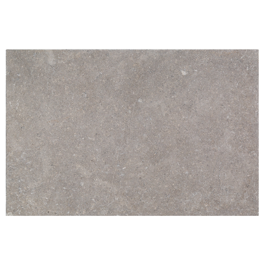 Amora Limestone- Brushed & Tumbled