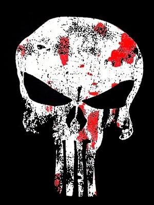 The Punisher T-Shirt | camiseta