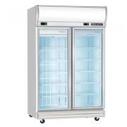 Upright Double Glass Freezer
