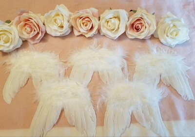 Angel wings (feather hanging wings)
