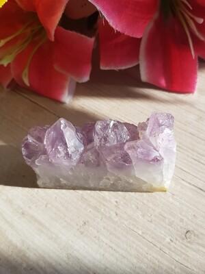 Amethyst druzy crystal slice