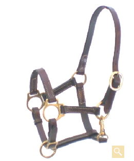5/8-Inch Gatsby Leather Halter
