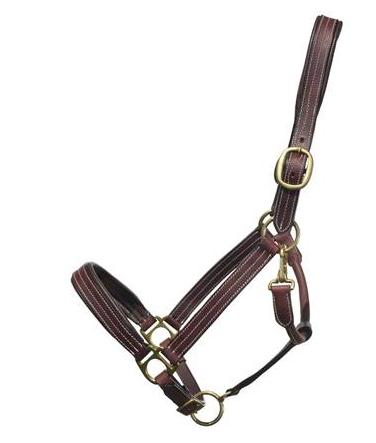 Bromont Padded Leather Halter