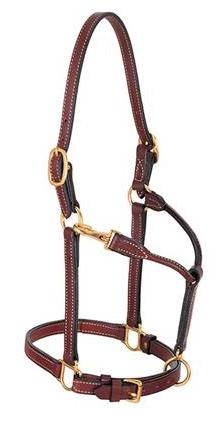 Weaver Leather Halter Arabian 3/4-Inch