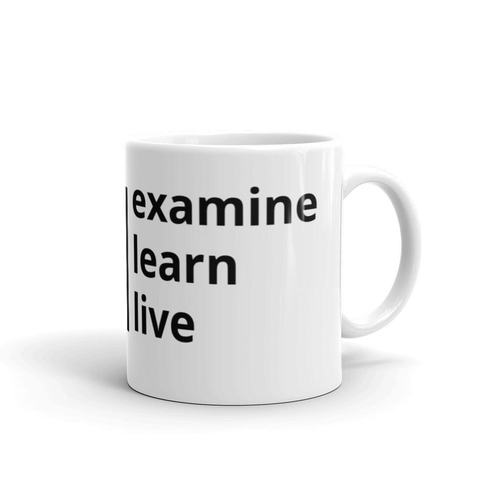 REexamine Podcast White Glossy Mug