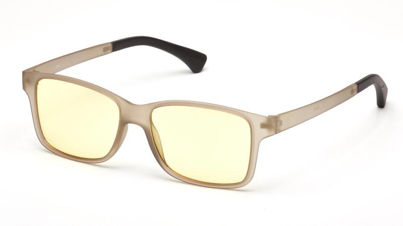 Очки для компьютера AF064 серый