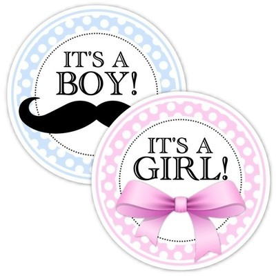 Pink and Blue Gender Reveal Party Stickers, Baby Shower Stickers