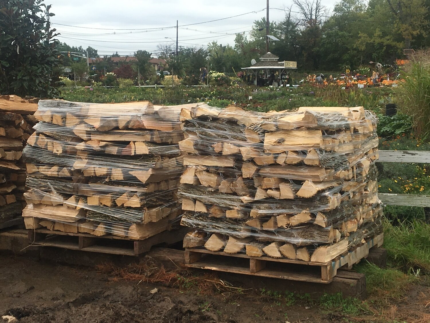 Half Cord of Firewood on Pallet (2 or more Pallets)