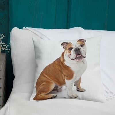 Tyyny - Englannin bulldog