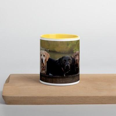 Kahvimuki - Labradorinnoutajat