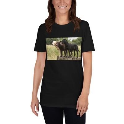 T-paita - labradorinnoutajat