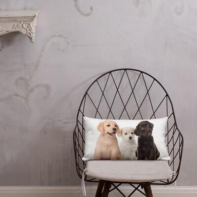 Tyyny - Labradorinnoutajat