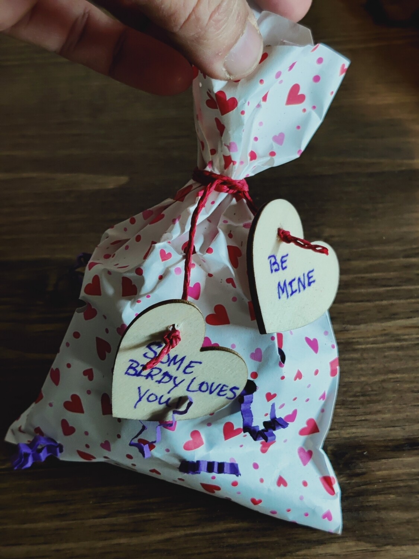Valentine Surprise Shredding Bag