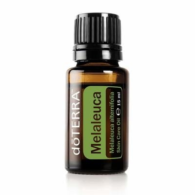 Melaleuca (Tea Tree) 15 mL
