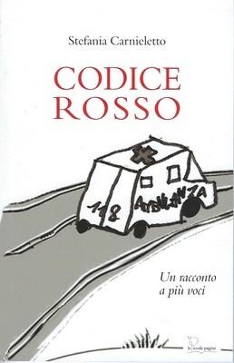 Codice rosso : un racconto a più voci / Stefania Carnieletto