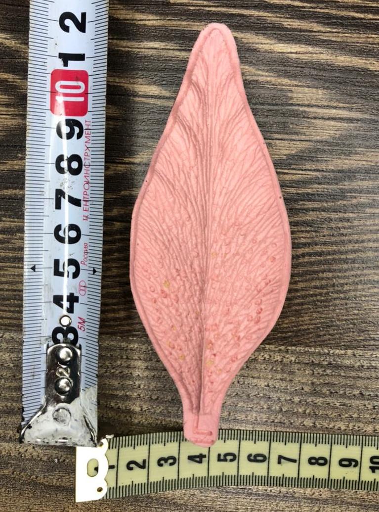 Молд: Лепесток Лилии, 12см*5см