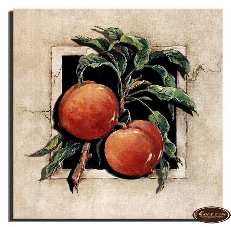 Спелые абрикосы, Размер: 20*20