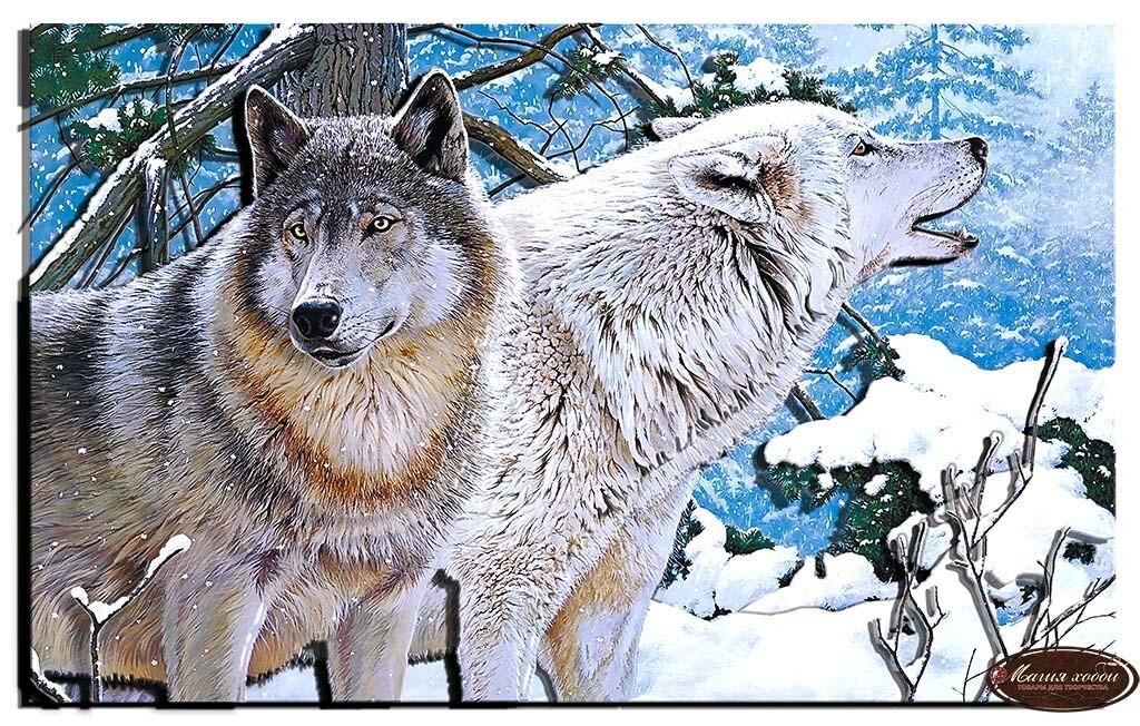 Пара волков, Размер: 25*40