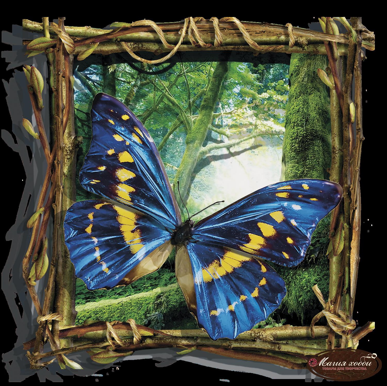 Бабочка голубая, Размер: 24*24