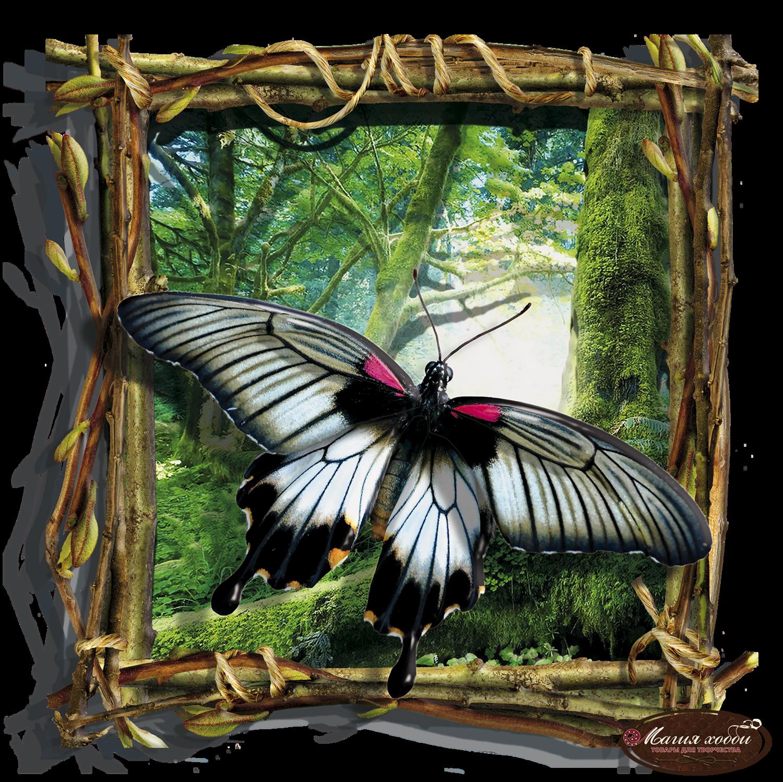Бабочка черно-белая , Размер: 24*24