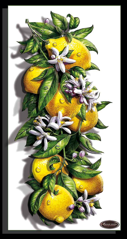 Сочный лимон, Размер: 15*29