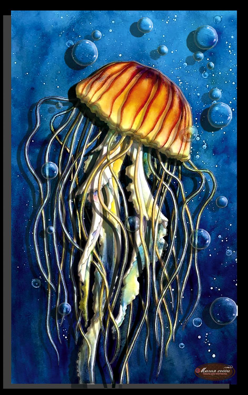 Красавица морей, медуза, Размер: 20*33