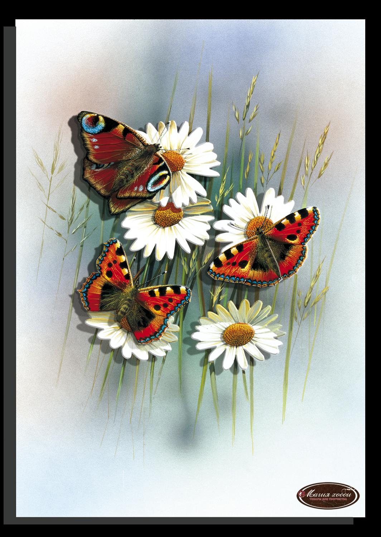 Бабочки ромашки, Размер: 20*20