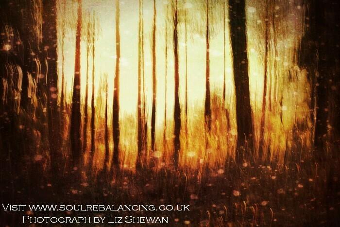 Soul Retrieval - Various Sessions