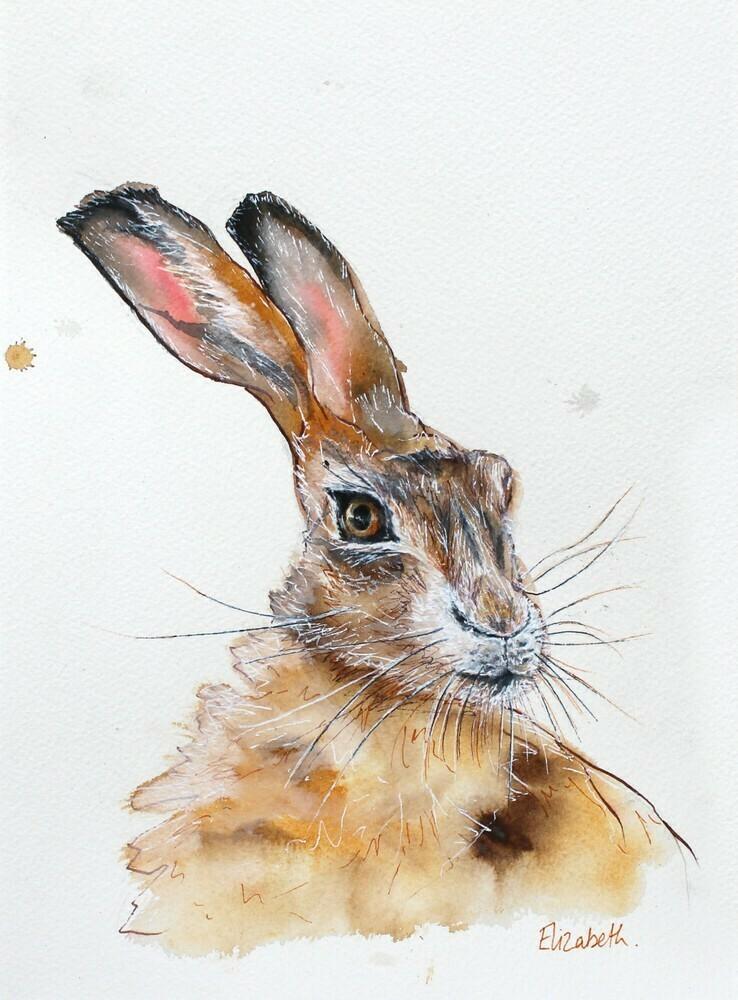 Hare Princess