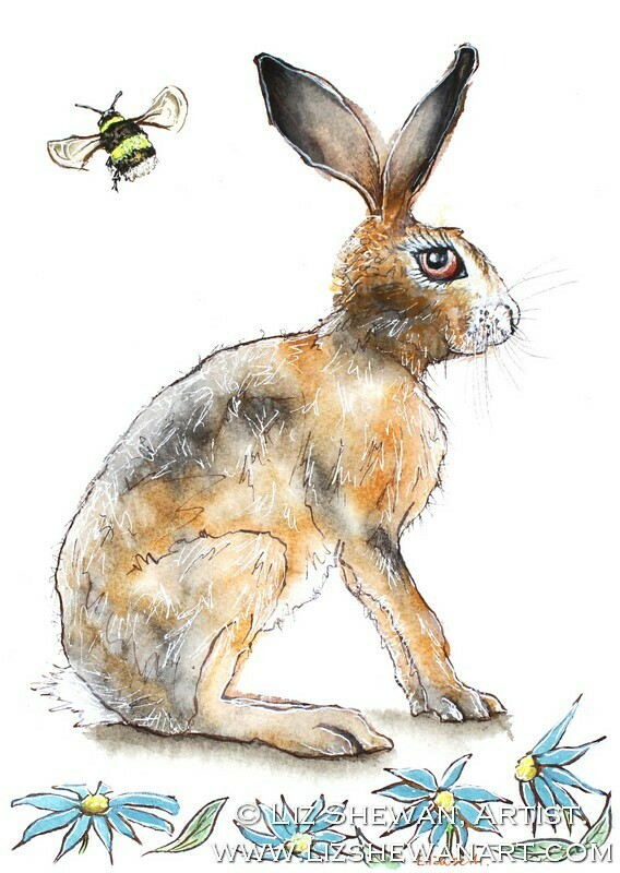 The Hare and the Bee Drawing