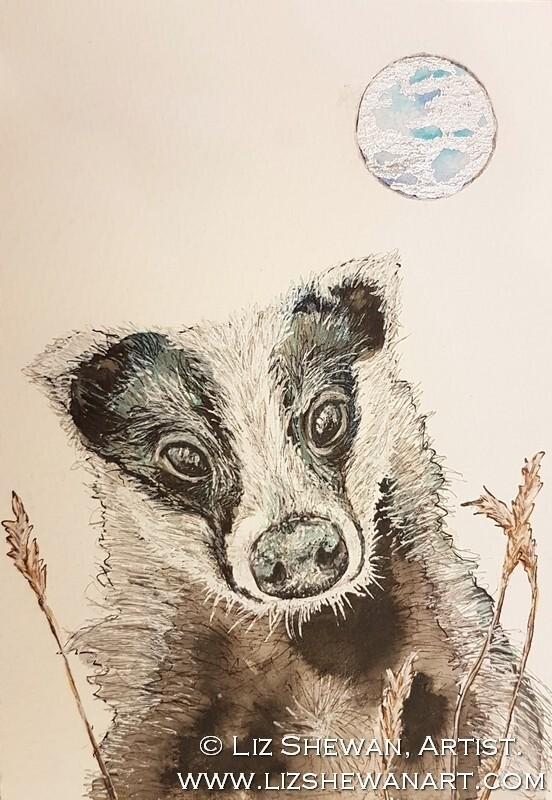 Badger Tales