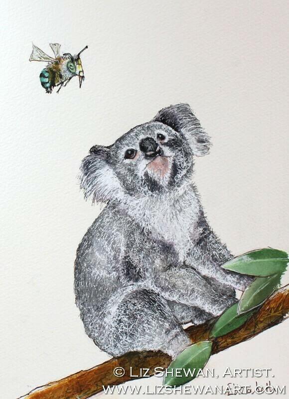 The Koala and the Australian Bee
