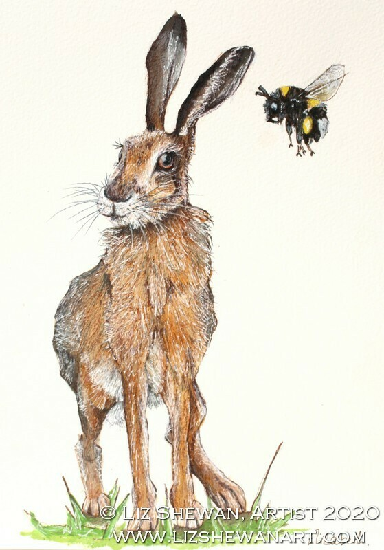 Bumble and the Hare
