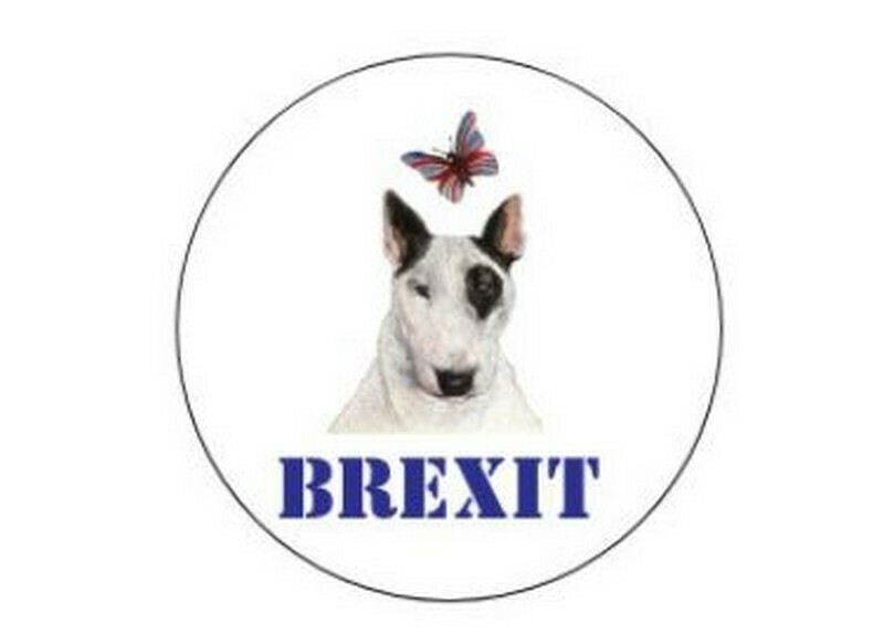 BREXIT - sheet of x24 stickers