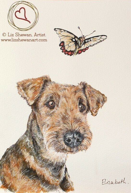 Airedale Terrier and the Butterfly