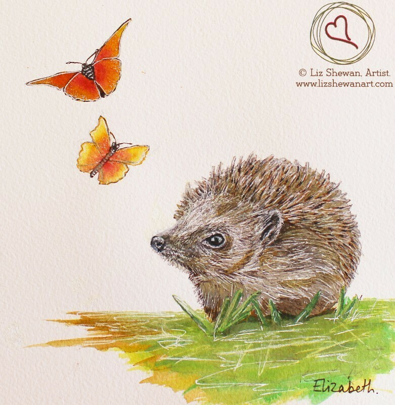 Hedgehog Flutterbies