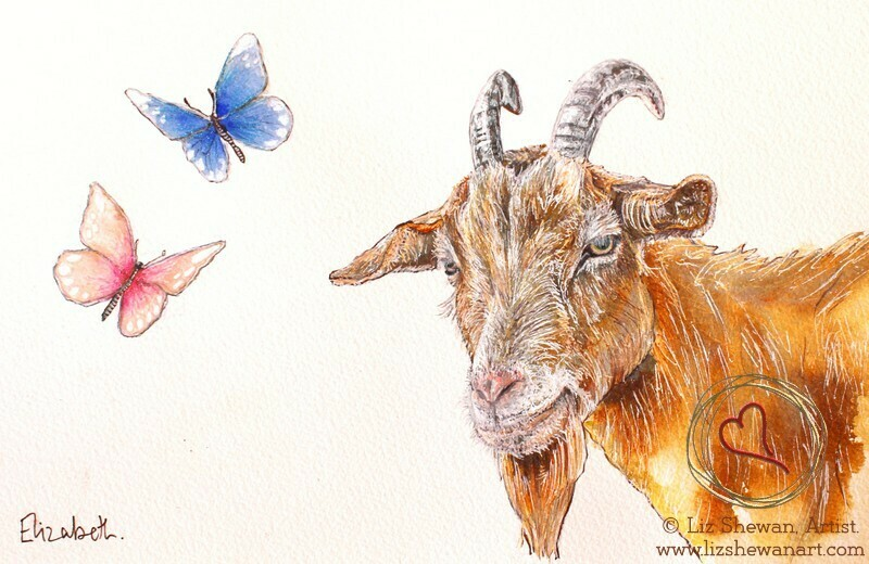Goat and the Butterflies