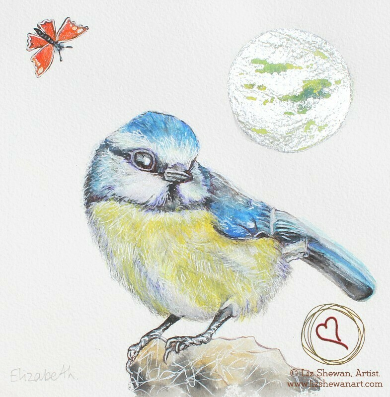 Blue Tit Butterfly Song | Heaven's Song
