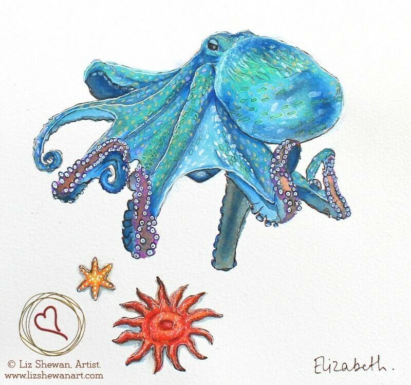 Octopus Star