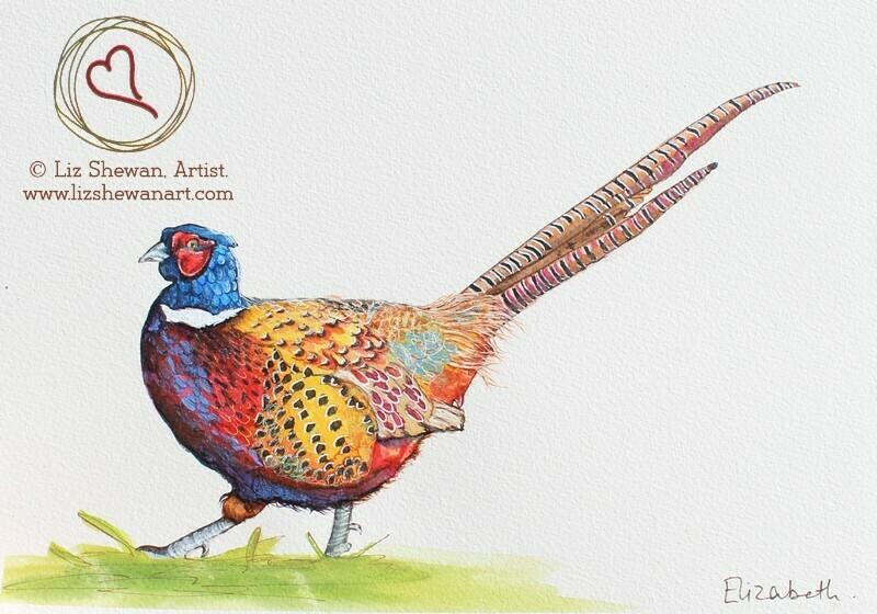 Pheasant Walk