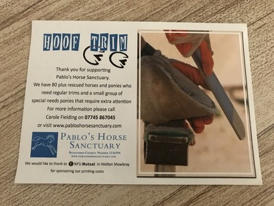 Buy a Hoof Trim for Pablo's