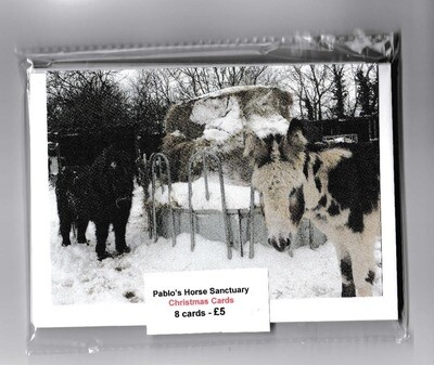 Pablo's Christmas Cards - Pack of 8