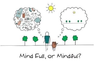 52 Week Mindfulness, Meditation & Mindset Email Series