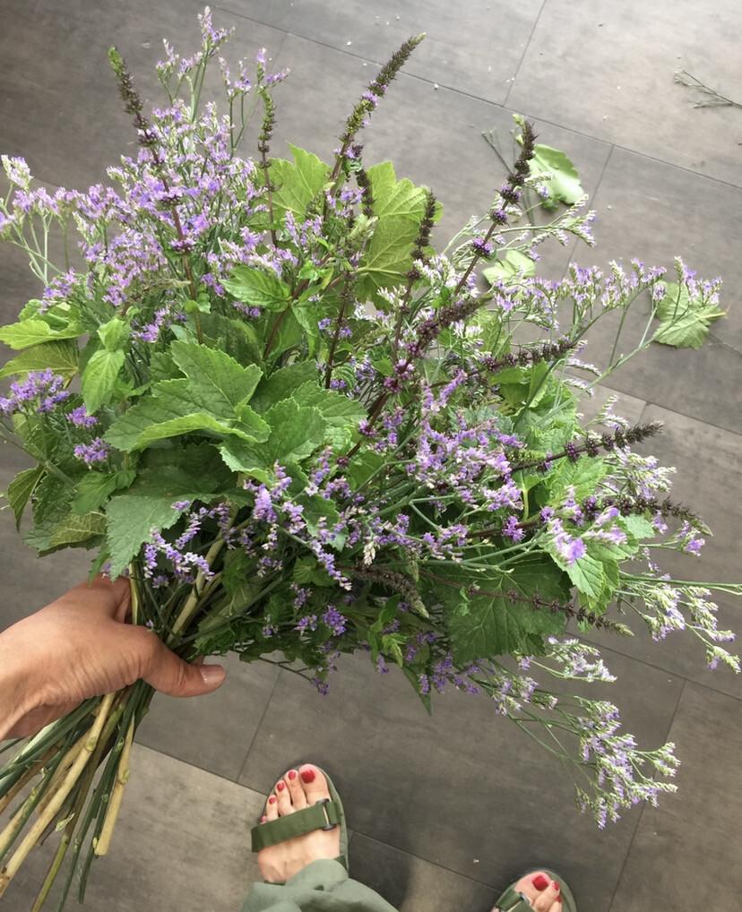 FL / Bouquet des Herbes Aromatiques