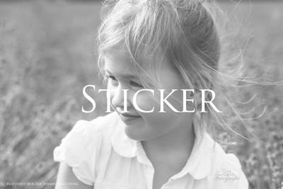 Sticker 4x6cm (10 Stück)
