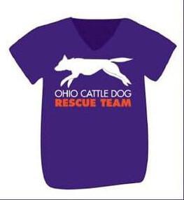 OCDRT Official T-Shirts