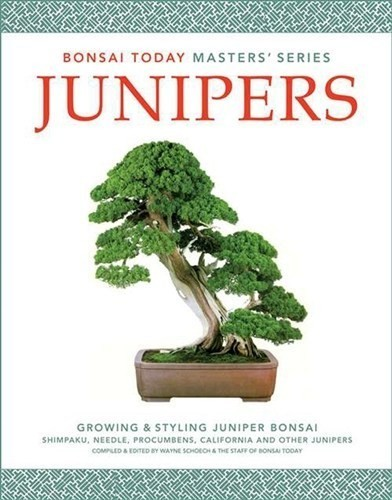 Junipers: Growing and Styling Juniper Bonsai Trees (Bonsai Today's Masters Series)