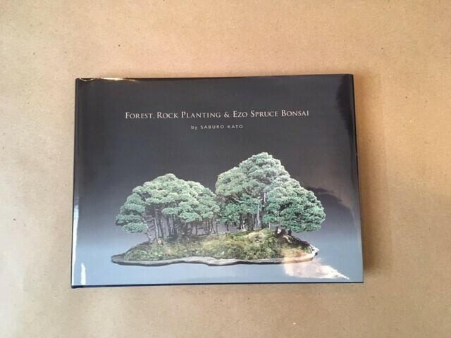 Forest, Rock Planting & Ezo Spruce Bonsai