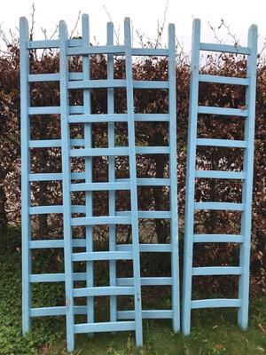 Ladders lichtblauw