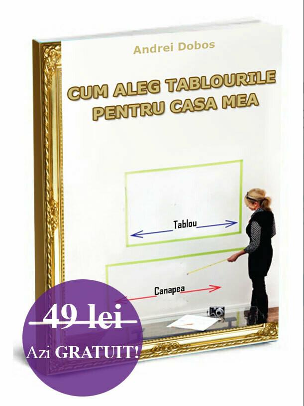 CUM ALEG TABLOURILE PENTRU CASA MEA ebook